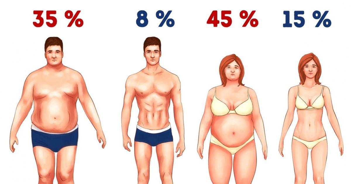 3простейших способа сжечь лишний жир без голодовки итренировок