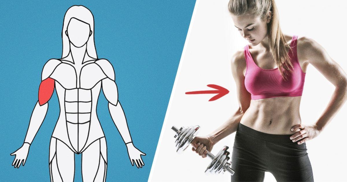 Этот сайт подберет вам программу тренировок для каждой группы мышц