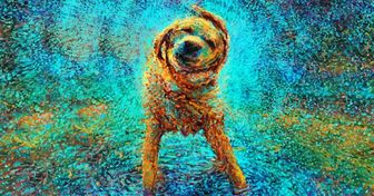 20картин, которым позавидует сам Ван Гог