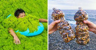20+ужасающих фото, которые показывают, как далеко мызашли взагрязнении планеты