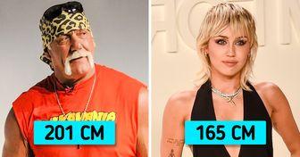 25+ знаменитостей, которые оказались совсем другого роста, чем мы себе представляли