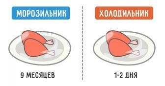 Сколько насамом деле живет еда вхолодильнике
