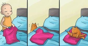 16комиксов, которые поймут все владельцы кошек