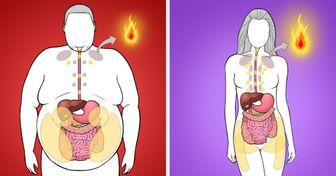 Как распознать места скопления избыточного жира и избавиться от него