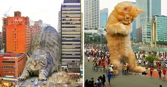 Художник изИндонезии представил, как котики моглибы переполошить наш мир, будь они чуть больше обычного