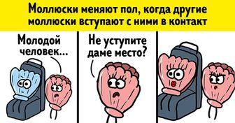 20+комиксов отсообщества «Образовач», которое ксерьезным новостям относится стонким юмором