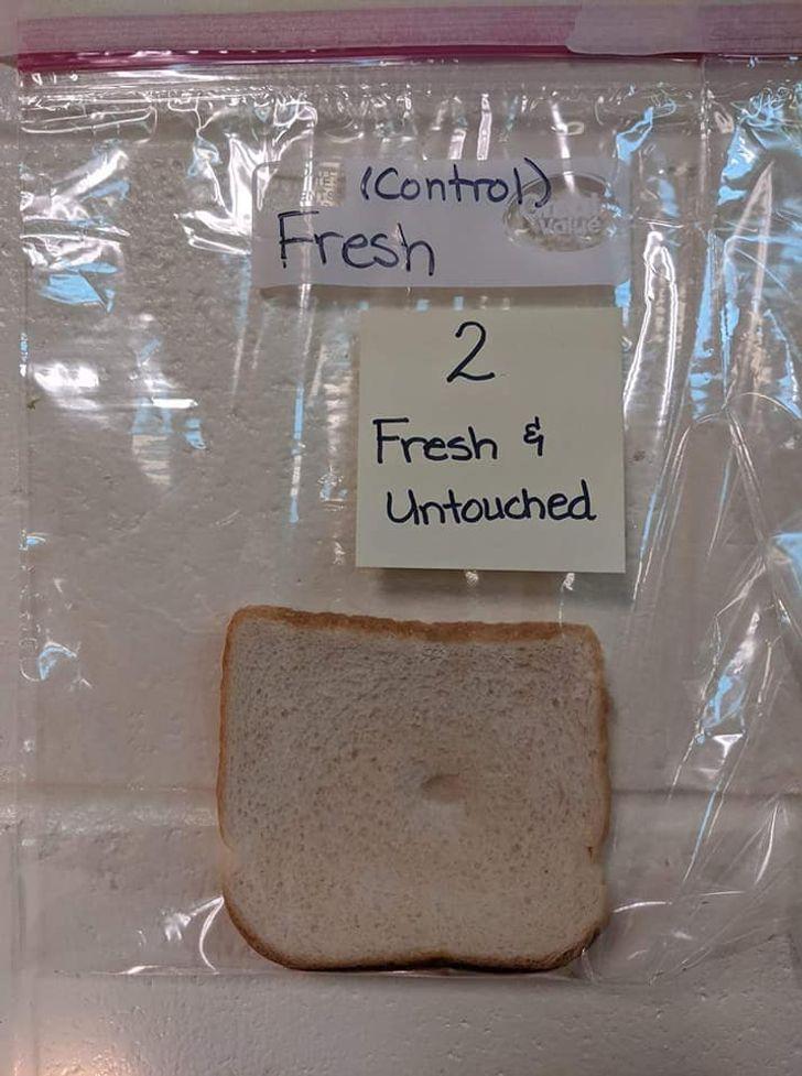 Учительница хотела показать детям, почему так важно мыть руки, и провела очень убедительный научный эксперимент