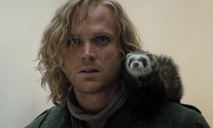 25 британских актеров, ради которых хочется бросить все и сбежать на Туманный Альбион