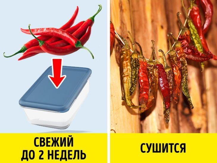 10секретов хранения капризных продуктов, которые могут испортиться даже вхолодильнике