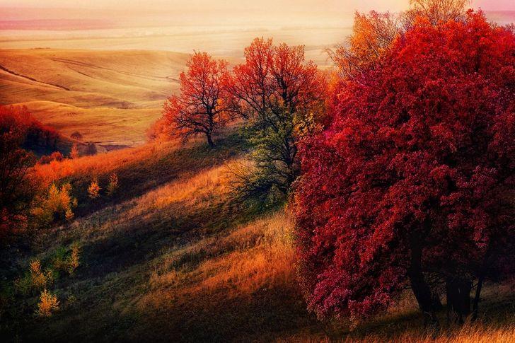 15 мест, где осень особенно прекрасна