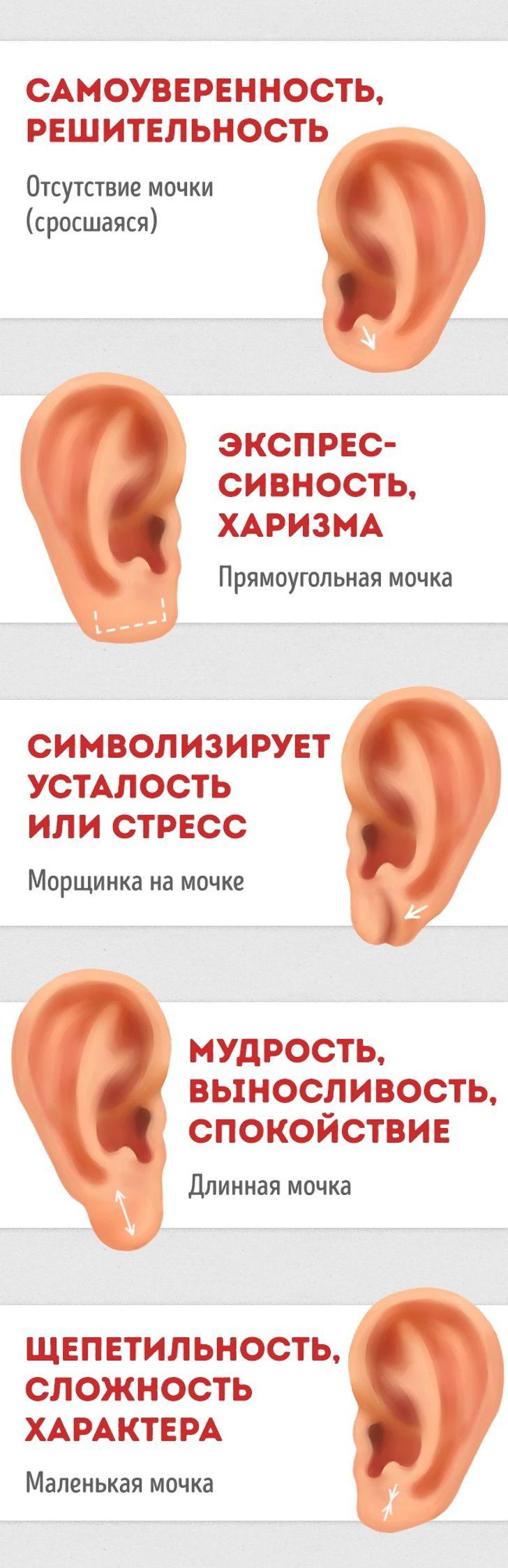 Как узнать характер человека поушам