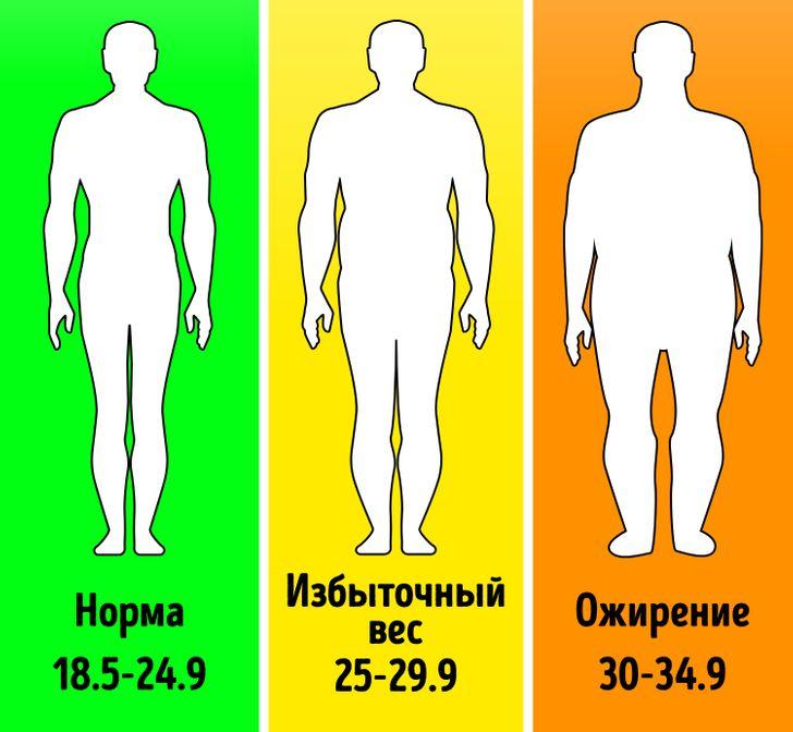 8 фактов о вашем теле, знание которых позволит вам жить дольше