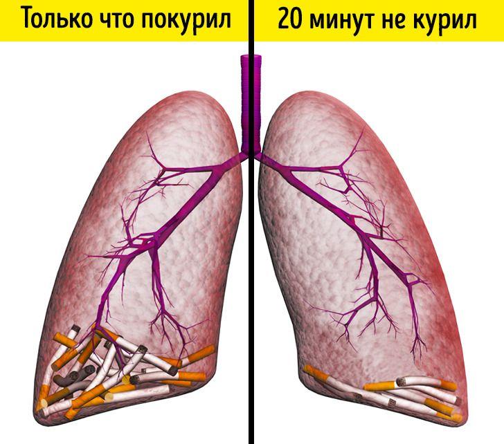Что будет если купить 1 сигарету в день гильза для сигарет купить в ростове на дону