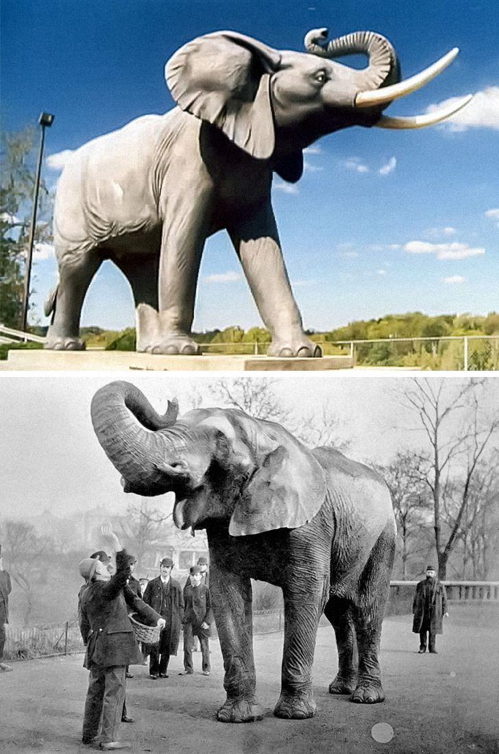10 скульптур, которые оставят вас абсолютно равнодушными. Пока мы не расскажем их истории