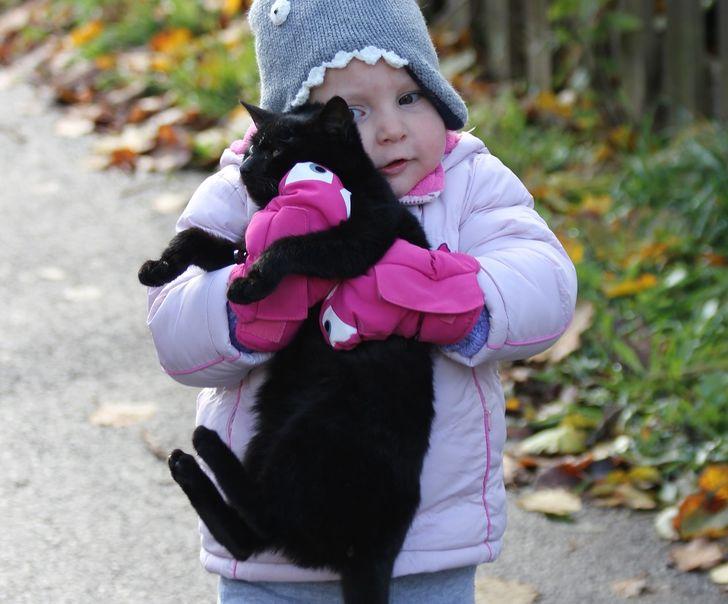 10 ошибок, которые давно пора перестать делать всем владельцам кошек
