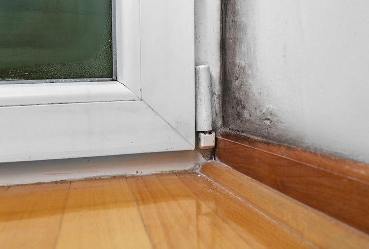 15вещей, которые стоит узнать, прежде чем снимать квартиру