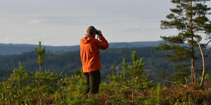 30+ фактов о жизни в Швеции, узнав которые так и хочется сказать: «Да вы шутите?»