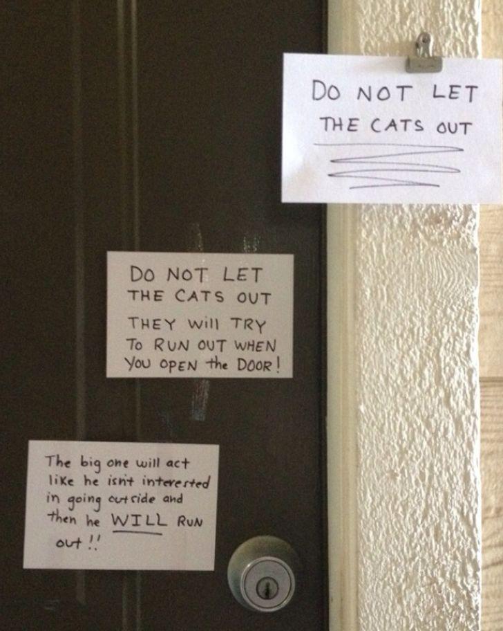 Достали соседи? Вот 25доказательств того, что они умеют нетолько бесить окружающих