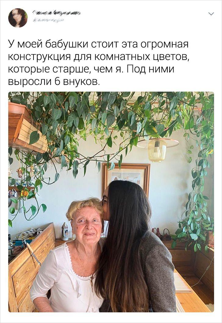 18 твитов о бабушках, которые, кажется, забыли посмотреть в паспорт и не собираются стареть