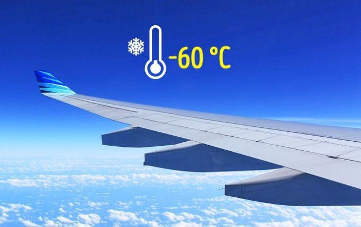 7хитростей идеального полета, окоторых незнает большинство пассажиров