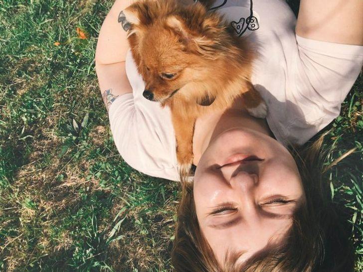 Девушка всю жизнь мечтала о большой собаке, но взяла шпица и не пожалела ни одной секунды