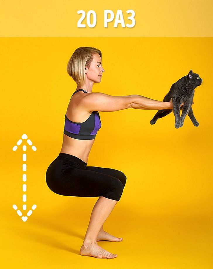 8способов заменить спортзал одним котом