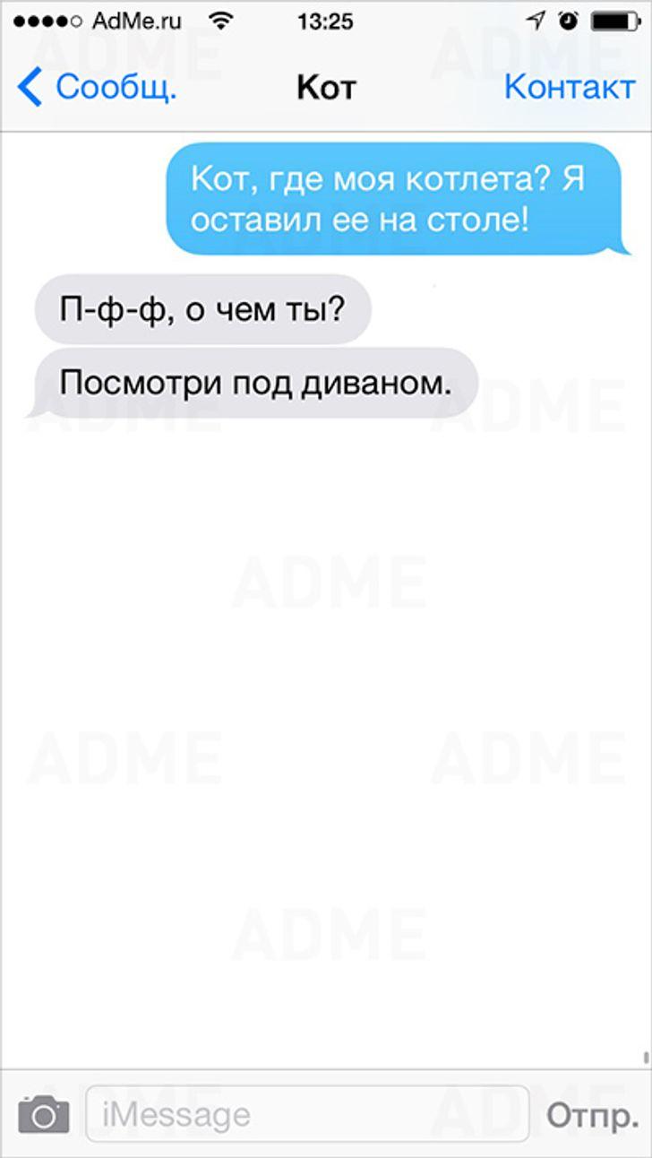 Еслибы коты умели писать СМС