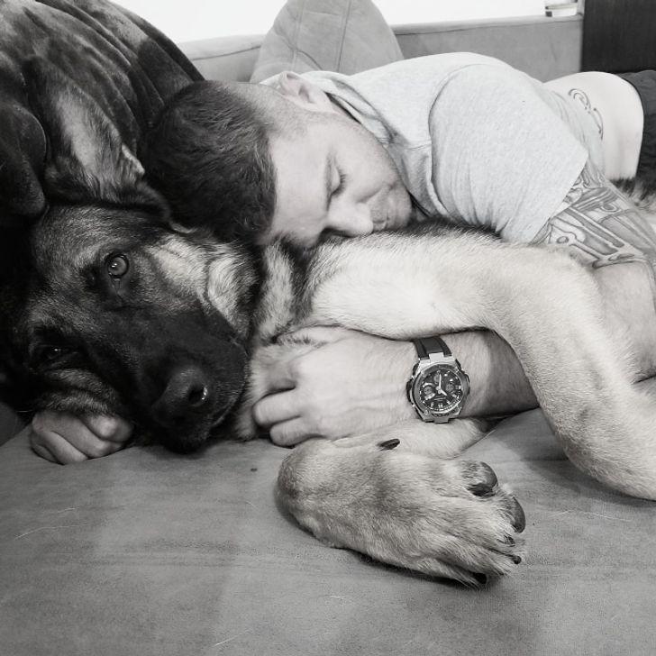 20+ снимков, доказывающих, что нет ничего приятнее, чем отдыхать в обнимку с домашними питомцами