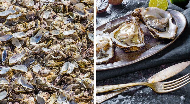 15пафосных блюд изсети, имеющих сомнительное происхождение