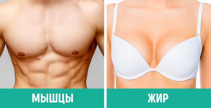Многие девушки недогадываются о26особенностях женского тела