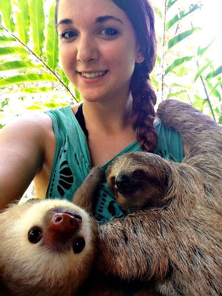 Волонтерам вприютах для животных скучать неприходится, ивот 20умилительных фотодоказательств