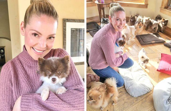 15 звездных собачников, которые жить не могут без своих четырехлапых друзей