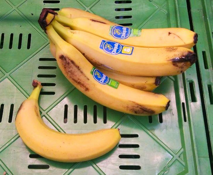 13 фактов о еде, которые вызывают желание вновь вернуться в универ и изучить что-то новое