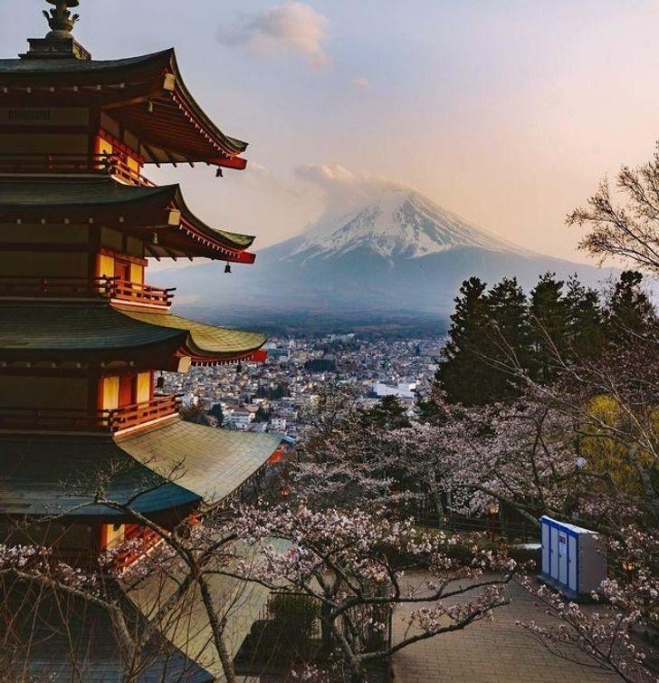 14 доказательств того, что Япония — страна из другой вселенной