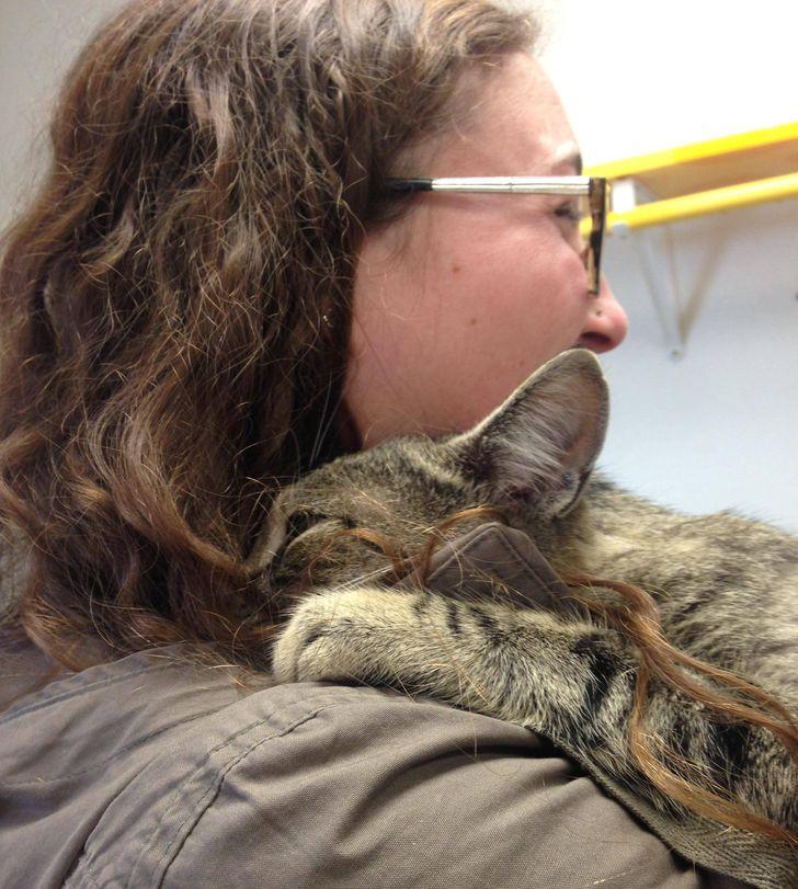 15 человек нашли время, чтобы спасти одно маленькое животное, и обрели друга на всю жизнь