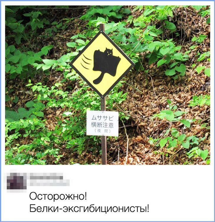 14человек, которые немогут просто взять иоставить фото без комментария