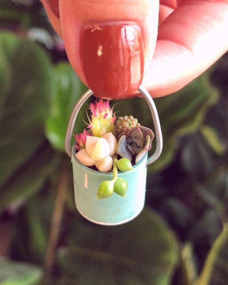 20 человек, которые по уши влюбились в необычные растения (Только взгляните на свадебный букет из толстянок)