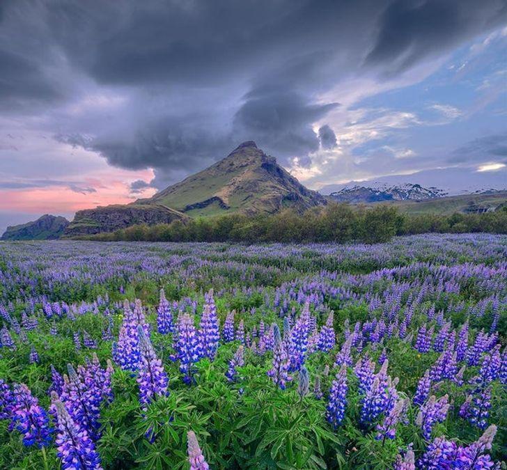 20+ причин начать откладывать деньги на поездку в Исландию прямо сейчас