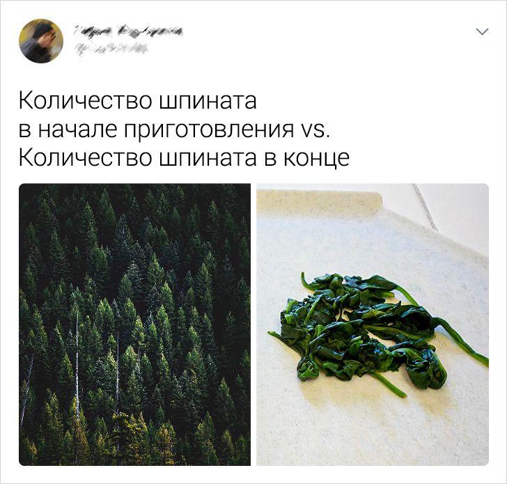 15 твитов о еде от людей, которые могут найти смешинку даже в вареном рисе