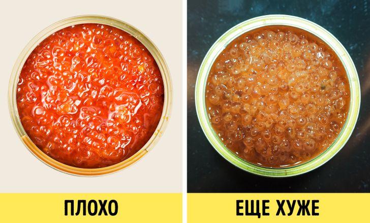 9+ советов от повара-технолога, как выбрать правильную красную икру